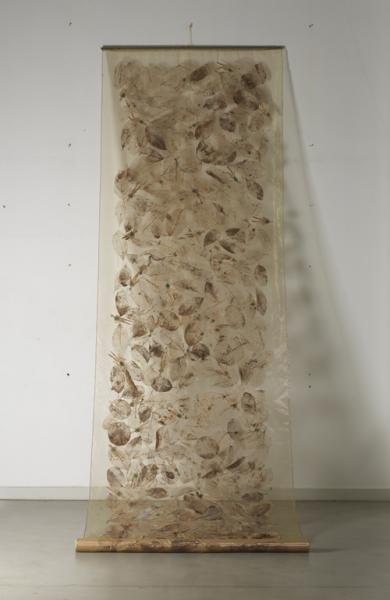 《呼吸》装置作品500×160cm 经过一年风化的树叶等组成 2015.jpg